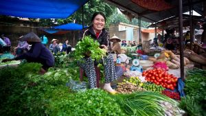 Women selling organic vegetables at a market in Viet Nam.
