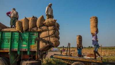 India suffers insufficient storage and handling facilities for in-transit commodities.